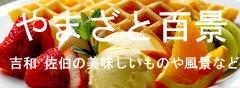yamazato30416.jpg