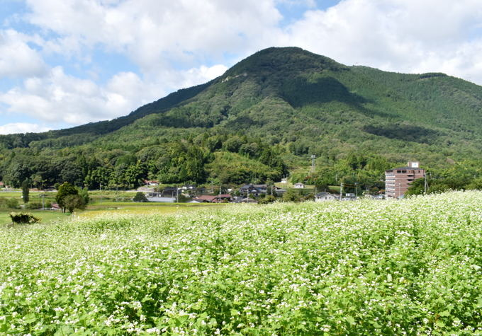 yukisoba11.JPG