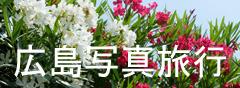 hirosima2912.jpg
