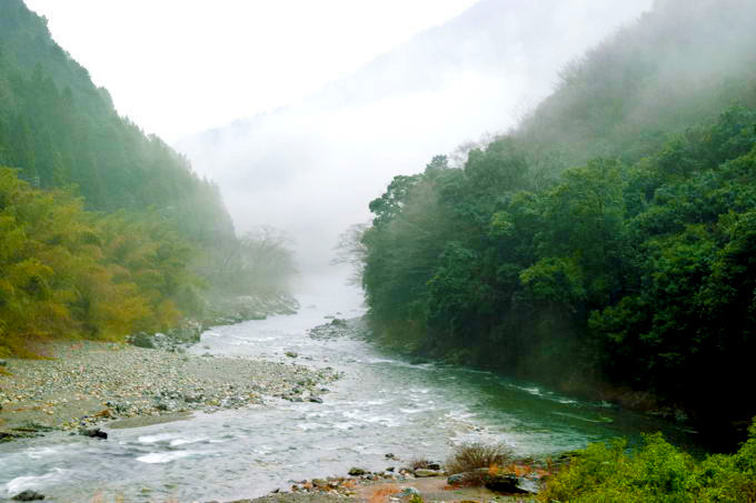 nishikigadeai.jpg