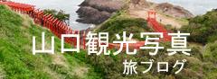 yamaguti305.jpg